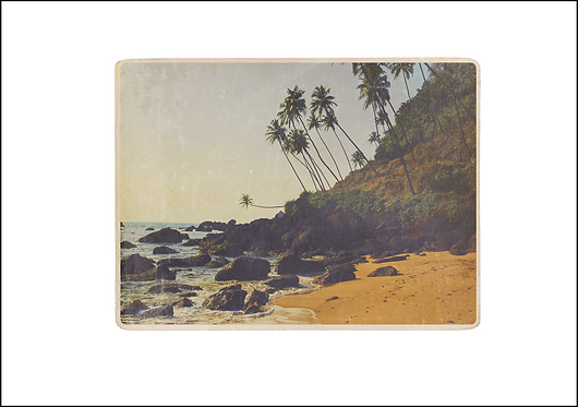 Beach & Palm Trees - A3 Fine Art Print