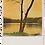 Thumbnail: Marple Walks Collection - The Roman Lakes #3