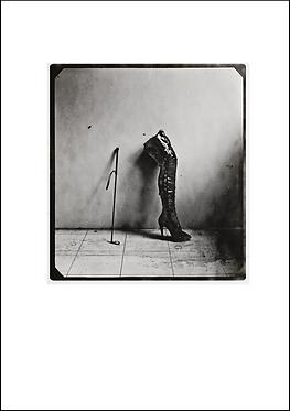 Whip & the Boot - A3 Fine Art Print