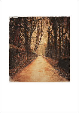 The Lakes Road - A3 Fine Art Print