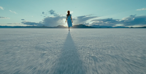 The Tree of Life (2011) - Terrence Malick