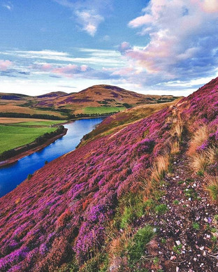 Scotland's Cairngorms