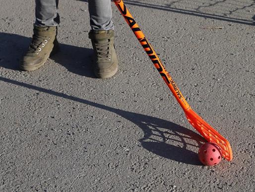 В Бирюлеве Западном подготовили онлайн-тренировку по флорболу для детей