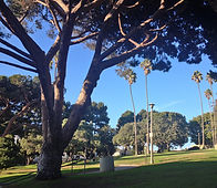 Hotchkiss Park.jpg