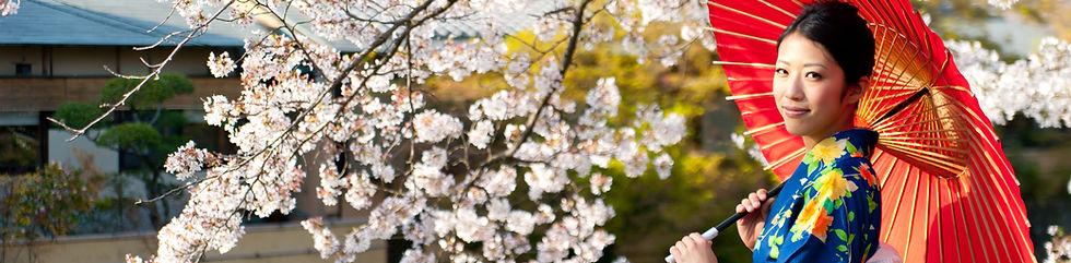Japanse Vrouw in Cherry Blossom