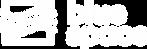 BlueSpace_Logo_White.png