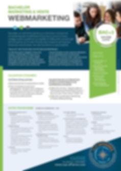 webmarketing 1.jpg