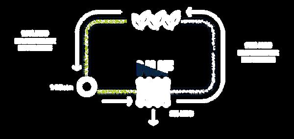 Schéma de purification d'eau pour l'agriculture