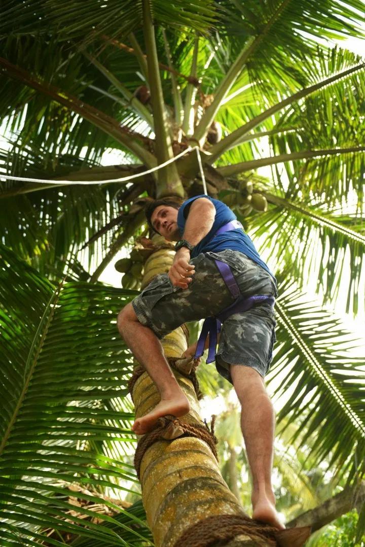 Kiran Jethwa climbs a coconut tree in Sri Lanka