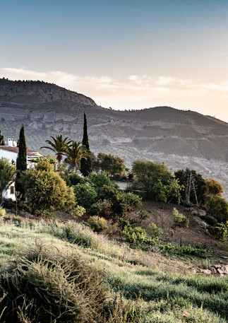 andalusia @poltisphotography-33.jpg