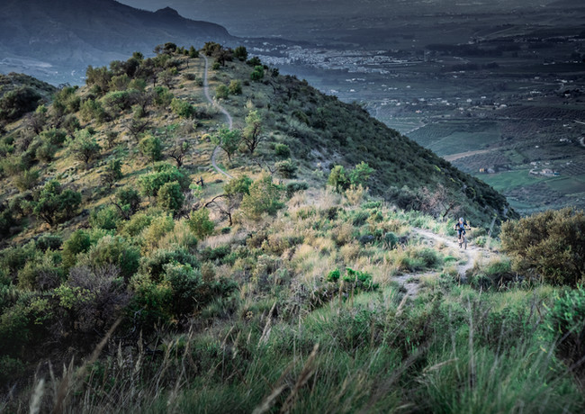andalusia @poltisphotography-62.jpg