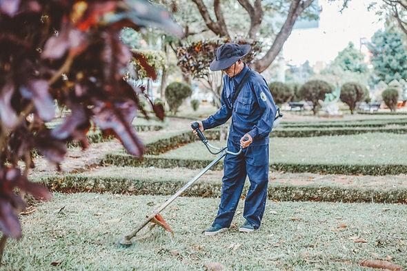 Hobart-Garden-maintenance-hire.jpg