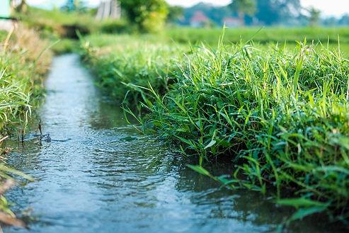 lawn-drainage-solution-hobart.jpg