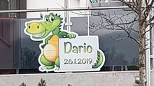 Dario, 26.01.2019