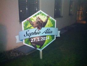 Sophie Alia, 27.1.2014