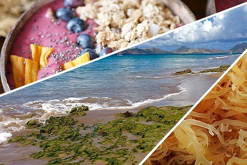 Royal Star Caribbean Sea Moss Complex Gel