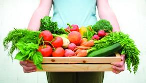 WHY YOU SHOULD EAT VEGETABLES