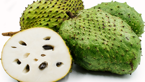 THE SUPERFRUIT CALLED SOURSOP