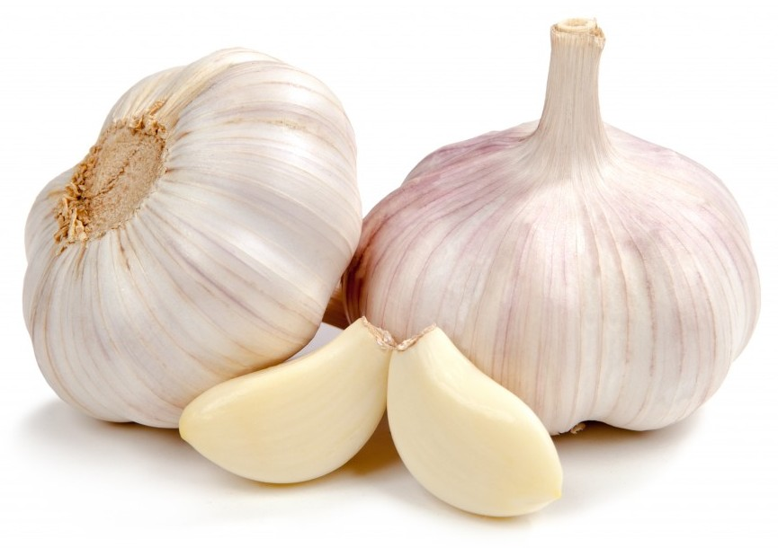 GARLIC: A GREAT HEALTHY SPICE