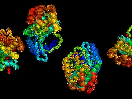 Nueva información sobre una proteína común podrían conducir a nuevos tratamientos contra el cáncer