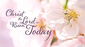risen-today-flower-main.jpg