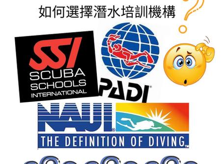 每位報讀潛水課程前必問:PADI, NAUI及SSI的分別?