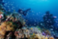 divinghongkong-advancedopendiver.jpeg