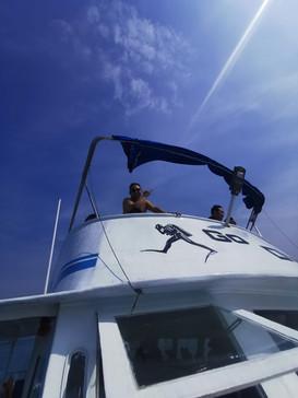 香港潛水地點適合香港潛水課程及船潛 fun dive hk go diving
