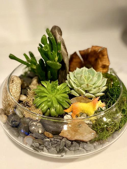 Custom Dish Garden