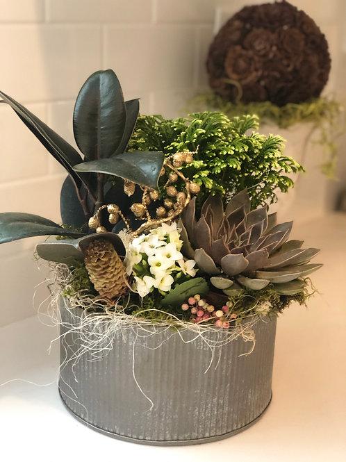 Succulent/low light foliage arrangement