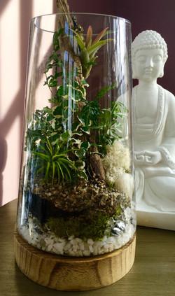 tall glass terrarium