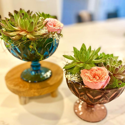 Vintage colored glass compotes filled with succulents, preserved roses & moss.