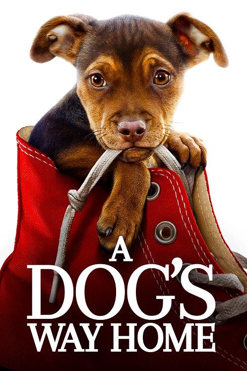 A Dog's Way Home (Movies Anywhere HD)