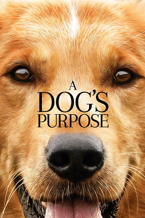 A Dog's Purpose (iTunes HD)