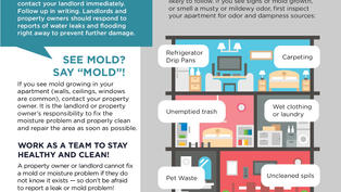 Apartment Moisture Checklist