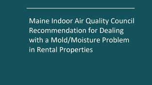 Mold in Rental Properties