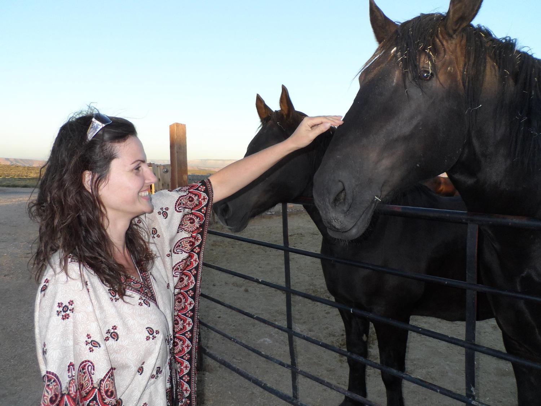 Kommunizieren mit den Tieren