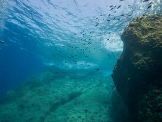 Η θάλασσα στη γλώσσα μας