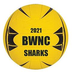SHARKS 2021.jpg