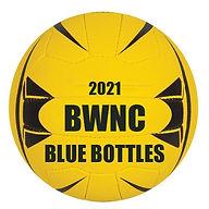 BLUE BOTTLES 2021.jpg