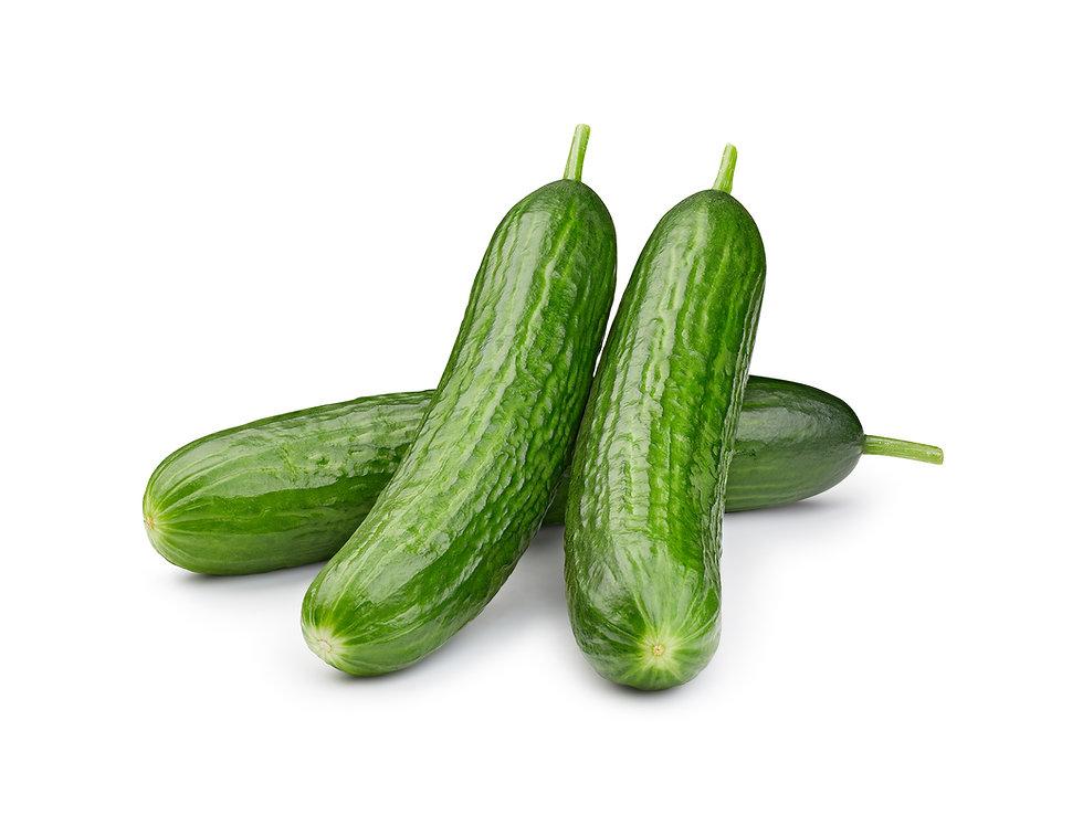 Greenhouse Cucumber