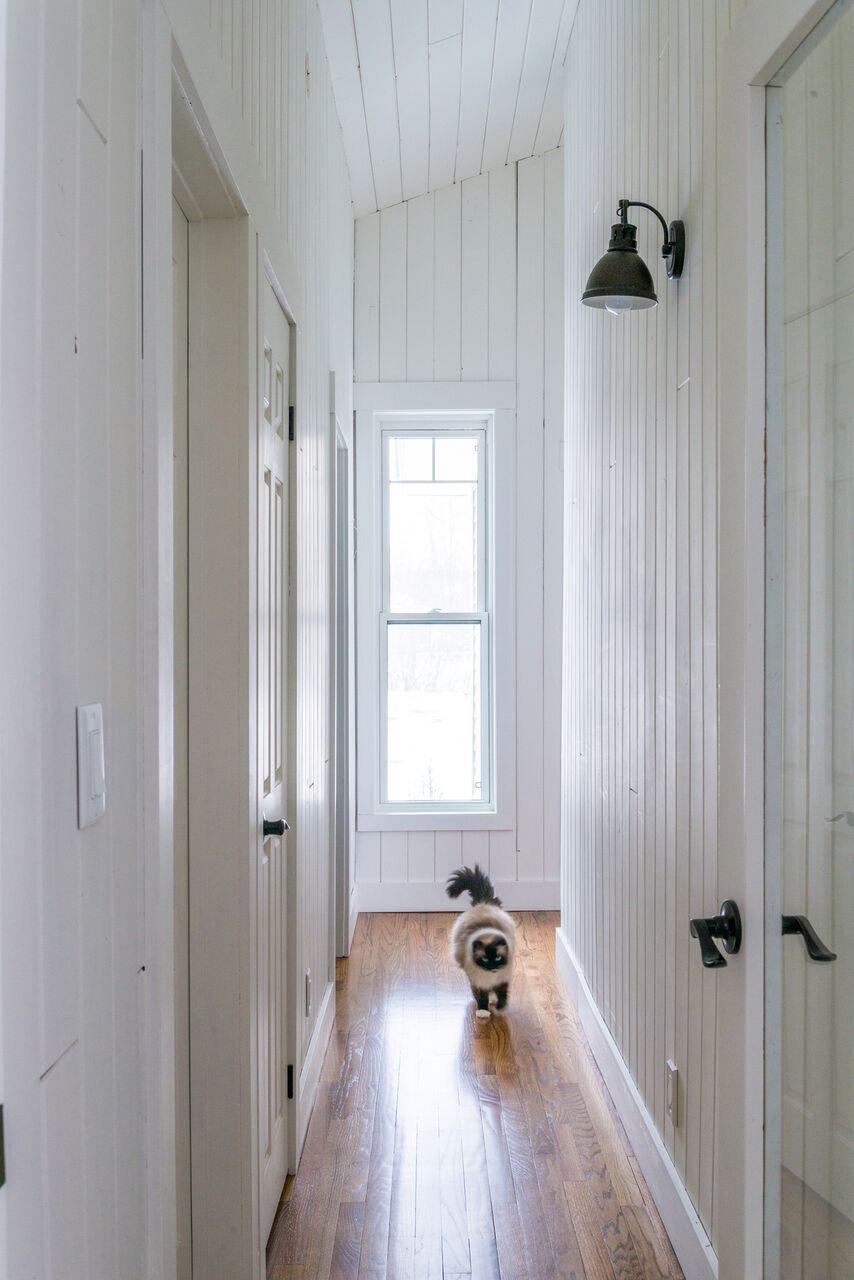 hall w cat_4079