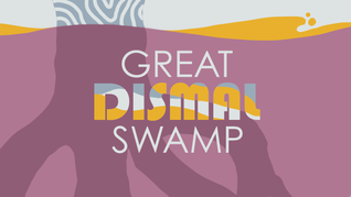 Great_Dismal_Swamp_Colors_v012Title.png