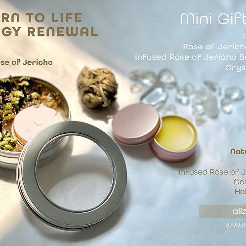 Mini Gift Set - Rose of Jericho