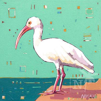 White Ibis - Print