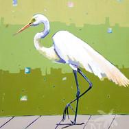 Egret at Riva Row