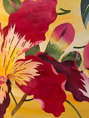Floss Silk Tree Flowers