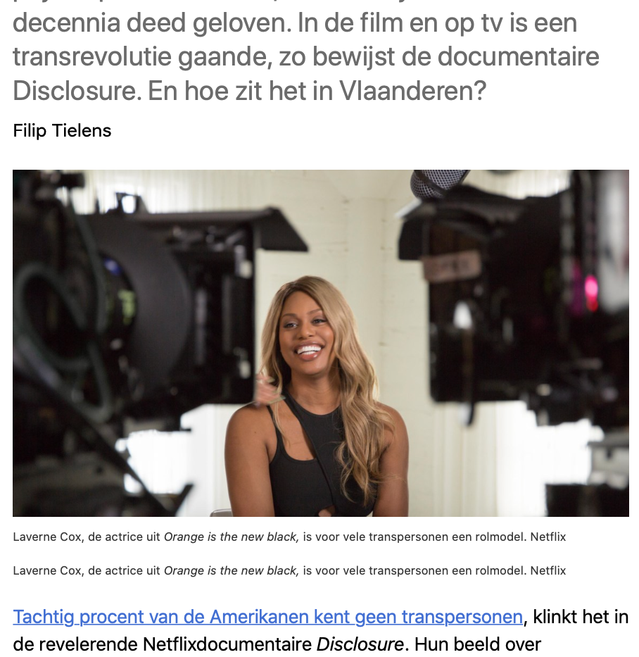 Interview - De Standaard d1