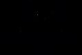 sustainability tribe-logo.png