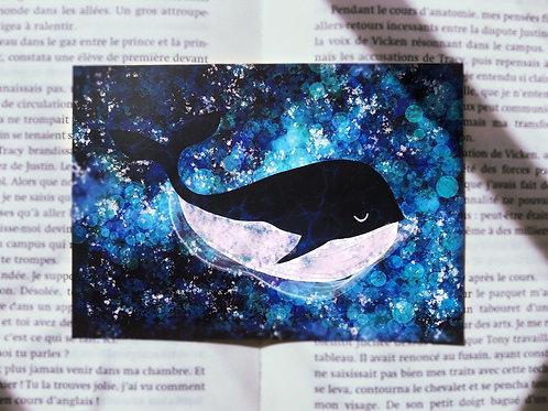 Carte Gérard la baleine